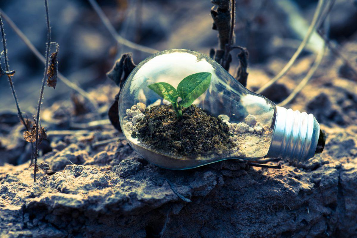 Changement climatique, et pour vous, il est encore temps ?